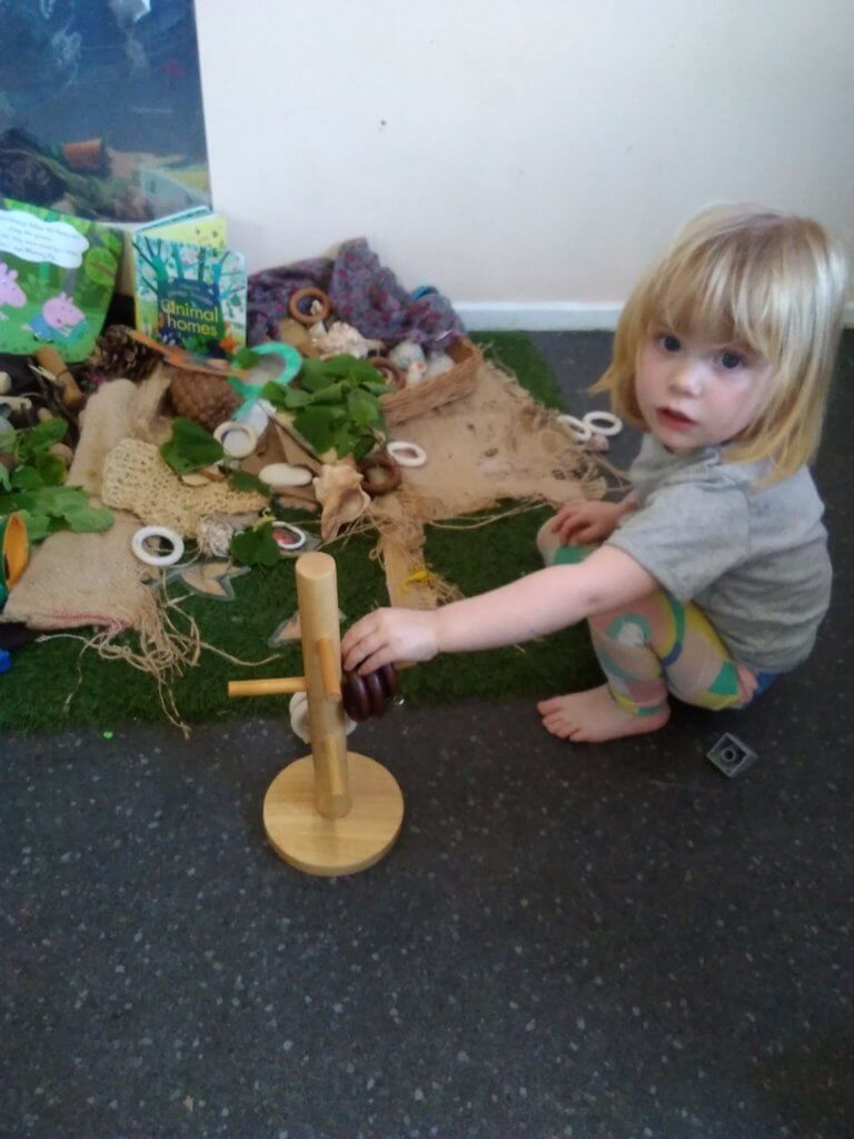 Natural resources, awe and wonder, curiosity, wooden, nature, experiment, imagination, shells, pine cones, self motivation