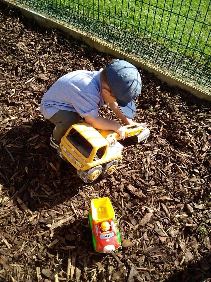 Dig, new area, bark, transport, digger, outside, exploration, adventure